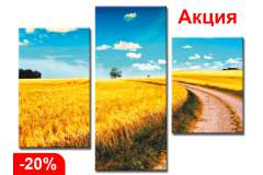 Пшеничное поле (Модульная)