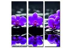 Орхидеи в пруду (модульная)