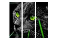 Кот с зелеными глазами (модульная)