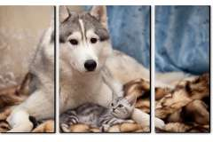 Хаски и кот (Модульная 110*70)