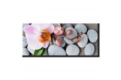 Орхидея на камнях (Панорамная)